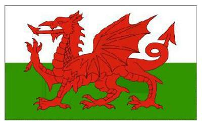 5Ft X 3Ft WALES DRAGON FLAG - WELSH NATIONAL FLAGS With Eyelets Red Dragon