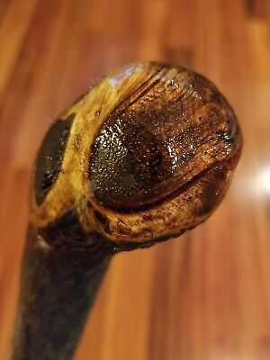 "39.5"" Lightweight Shillelagh Celtic Walking Cane Solid Made USA"