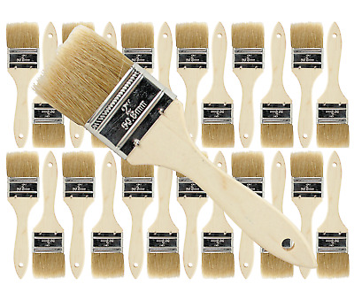 24 Pk- 2 inch Chip Paint Brushes for Paint, Stains,Varnishes,Glues,Gesso