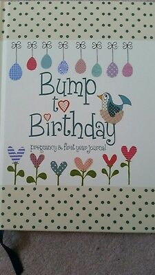 Bump to Birthday pregnancy and first year journal