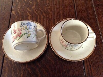 Two Vintage J&g Meakin Lifestyle Wayside Cups And Saucers