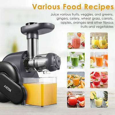 Cold Press Juicer Premium Juice Making Machine Slow Masticating Extractor Fitnes