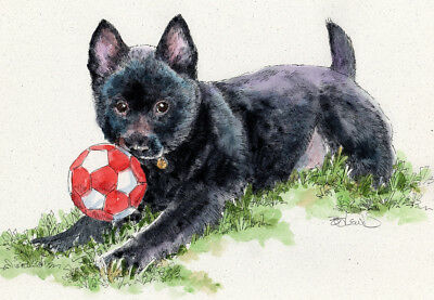 SCHIPPERKE SOCCER Original Watercolor on Ink Print Matted 11x14 Ready to Frame