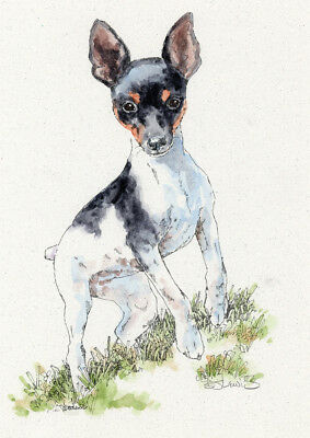 TOY FOX TERRIER Original Watercolor on Ink Print Matted 11x14 Ready to Frame