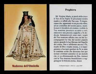 Santino Holy Card - MADONNA DELL'OLMITELLO DELICETO