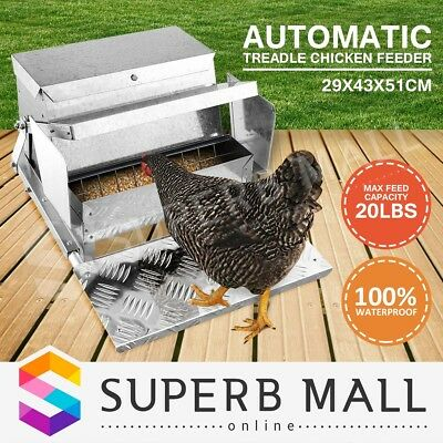 20LBS Auto Automatic Chicken Feeder Chook Galvanized Poultry Treadle Self Coop