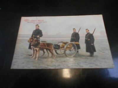 Cp Armee Belge Pre Ww1 Mitrailleuse A Traction Canine Un Attelage 3568