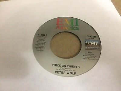 """Peter Wolf Come As You Are  V 45 7"""" Z"""