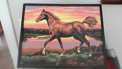 Paint by number Horse painting, framed