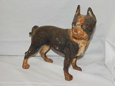 "Antique Cast Iron Boston Terrier Door Stop Hubley??  ""Barn Find"""