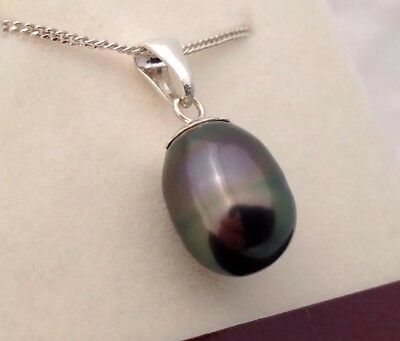 Free Shipping! 12 x 9.4mm AA+ Tahitian South Sea Pearl Sterling Silver Pendant