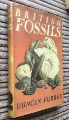 British Fossils Book By Duncan Forbes - 1971 Edition-Good Condition