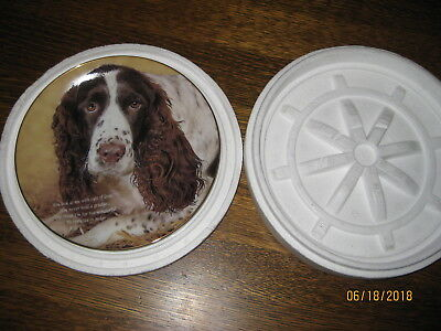 """Eyes of Love"" Cherished Springer Spaniels plate by Danbury Mint"