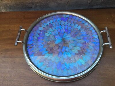 Butterfly Wing Tray