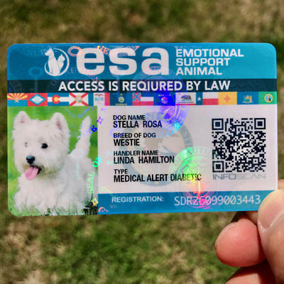 Emotional Support Title Card Animal - Esa Id Badge Service Dog Id - Back Info