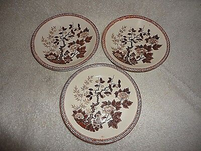 3 Vtg NASCO Indian Tree SAUCER for Demitasse set Japan