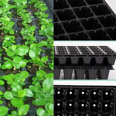 200 Cell Strength Seedling Starter Tray Seed Vegetables Fruits Plant Propagation