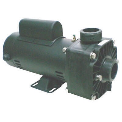 DAYTON Spa Pump,1.5-1/6HP,3450,230V, 5PXG3