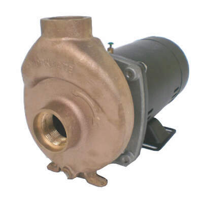 DAYTON Pool/Spa Pump,1 HP,3450,115/230, 5PXD4