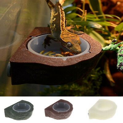 Blesiya Reptile Feeder Food Holder Cup Gecko Natural Rock Look Ledge Decor