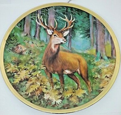 Stag Deer in Forest Decorative Plate Made in Bavaria West Germany TK