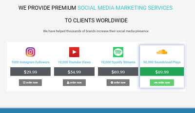 Turn Key Social Media ReSeller Business | 100% Out Sourced