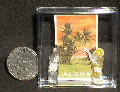 Luau Set Poster Alcohol Liquor Bottle Drink 1:12 Dollhouse Miniature Hawaii 8560
