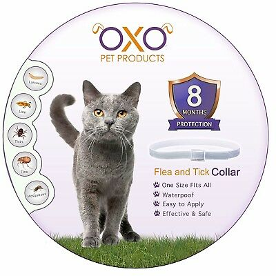 NEW Natural Cat Flea and Tick Collar Adjustable Waterproof Lasts Up To 8 Months