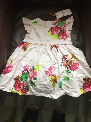 Ted Baker Baby Girl Dress 12-18months NEW with Tag