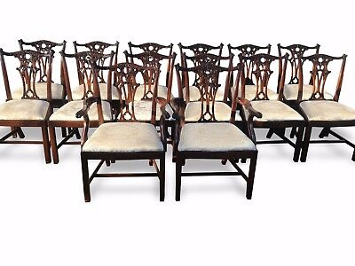 14 Grand Chippendale Style Mahogany Dining Chair Set Pro French Polished