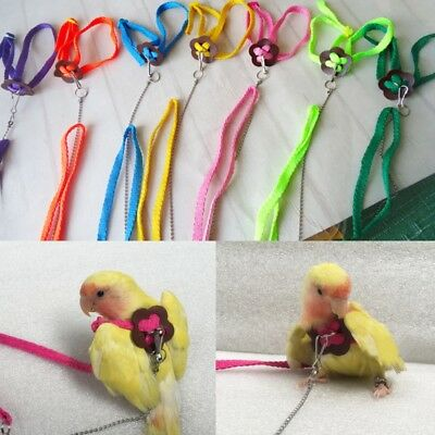 Outdoor Parrot Bird Leash Adjustable Harness Training Rope Anti Bite Flying 1.2M