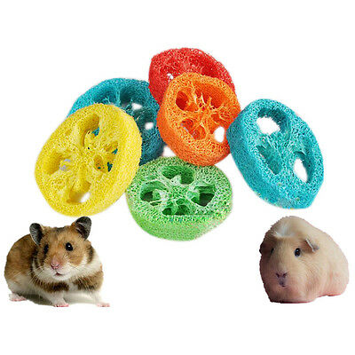 2PCS Pet Hamster Bird Parrot Safe Natural Loofah Tooth Cleaning Chew Play