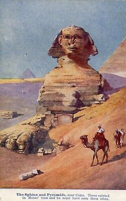 The Sphinx  Giza  Cairo  Egypt