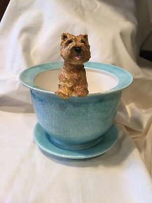 Norwich Terrier Hand Sculpted Sculpture Pot