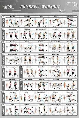 Dumbbell Workout Exercise Poster BodyBuilding Guide Fitness Gym Chart