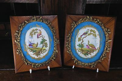 Sevres style pair of plaques, in ormolu frames on king wood, 19th century