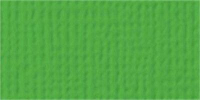 """American Crafts Textured Cardstock 12""""X12""""-Grass - 25 Pack"""