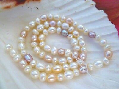77 x 5-7mm WHITE, PURPLE, PINK  Freshwater Pearl Fully Drilled, loose strung