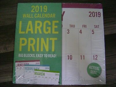 2019 - 16  Month Large Print Wall Calendar 12 X 11-New
