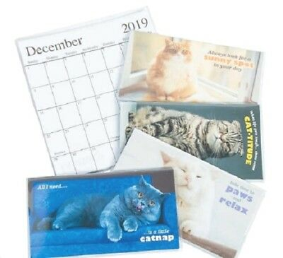 1 2019-2020 Pocket 2 Year Calendar Fat Cat    **FREE SHIPPING with 6 items**