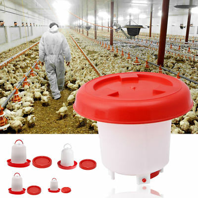 Chicken Feeder Drinker Poultry Feed Water Waterer Automatic Drink Bird Grid