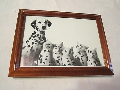 Dalmatian Dog with Spotted Cats Photo Picture Print Framed