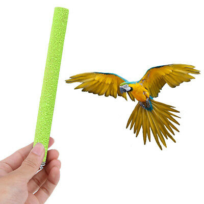 Aventura Bound Perca terapéutica Pet Bird Parrot Nail Trimming Perches Bird Toy