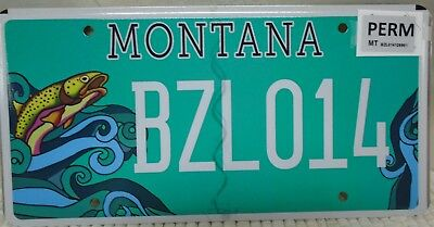 Montana Sponsored License Plate  Ecology Project International 100% Mint  Bzl014
