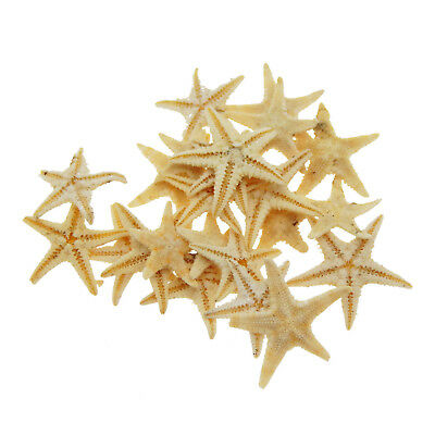 Lot of 20 Natural Dried Tiny Starfish Ornaments DIY Crafts Nautical Decor