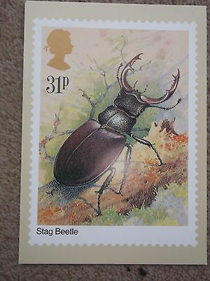 Stag Beetle Royal Mail 31P Postcard