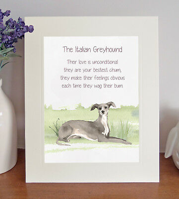 Italian Greyhound BESTEST CHUM Novelty Poem 8 x 10 Picture/10x8 Print Fun Gift
