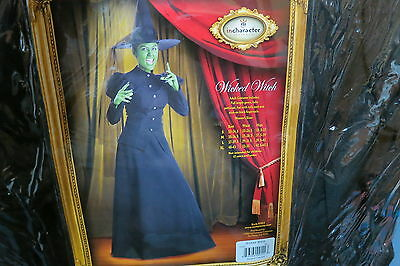 Halloween Costume incharacter Adult Wicked Witch Gown Petticoat Hat Nails XL