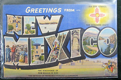 Postcard New Mexico Large Letter Unposted Linen