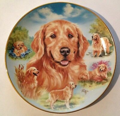 "Golden Retriever - A Heart Of Gold - 8 1/4"" - 2003 Bradford Plate Collection"